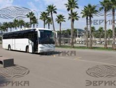 Трансфер Олимпийский Парк Сочи Автобус